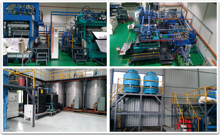 Fine Pulp Moulding Machine Installed in Malaysia